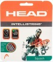 Head Intellistring